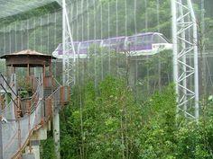 Huge Aviary, Jurong Bird Park, Singapore