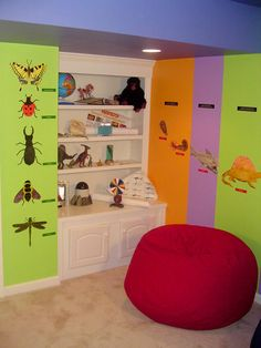 Trevor...shelves filled with his science tools...food chain..bugs...
