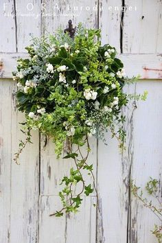 Charming Hanging Plants ideas to Brighten Your Patio – Page 5781751791 – Gardening Decor Hanging Wall Baskets, Hanging Flower Baskets, Hanging Plants, Plants Indoor, Flower Lei, Flower Pots, Container Plants, Container Gardening, Flower Containers
