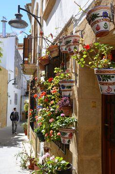 Carrer florejat #xabia #javea #costablanca #xabiahistorica www.xabia.org