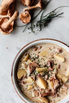 Hunting for wild mushrooms can be fun and rewarding. On our most successful adventures we come home and make this earthy chanterelle chowder with the nature's gold we foraged along the way.
