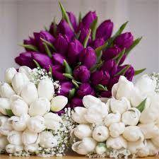 purple and white tulip bouquets