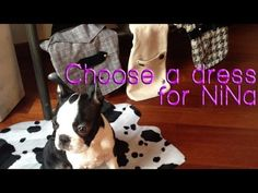 #Choose a different #ending #video.  What shall I #wear #today? Would you like to help me to choose the perfect #dress?  Love to know what you think!  It's up to you! Enjoy!    Subscribe: www.youtube.com/NiNaTheDogSeries