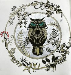 """The Owl in Gel Pen. #JohannaBasfordsEnchantedForest #JohannaBasford #adultcolouringbook #beautiful #Pretty"""