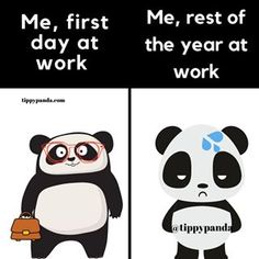 Tippy Panda 🐼🎀 (@tippypandastore) • Instagram photos and videos Panda Meme, Photo And Video, Memes, Videos, Instagram, Video Clip, Meme