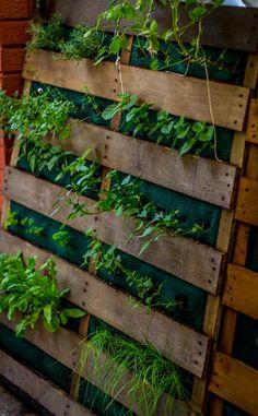 Vertical Herb Garden DIY Pallet