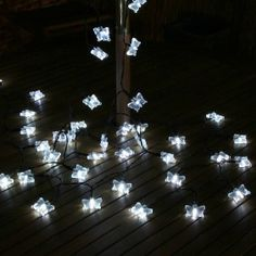 Solar Butterfly Fairy Lights with Timer, White LED, 5m