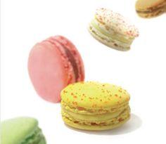 Les nouveaux Macarons , by Fabrice GILLOTTE, présent au Salon du Chocolat de Cannes, du 23 au 25 novembre 2012