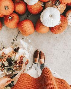 Fall Pictures, Fall Photos, Autumn Cozy, Fall Winter, Fall Inspiration, Autumn Aesthetic, Orange Aesthetic, Happy Fall Y'all, Autumn Photography