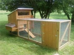 great chicken tractor
