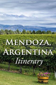 Mendoza Argentina Itinerary. Hiking, wine tasting, and a side of adventure. #mendoza #argentina #aconcagua #adventuretravel