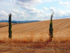 Landscape Maremma Tuscany