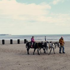 Bridlington Beach - Good day out for families , located on the East Coast of the UK. Children can enjoy a donkey ride.