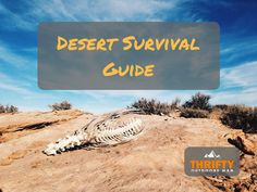 Planning a backpacking trip through the desert takes some special precautions and preparations to help ensure a successful trip. Many people believe the desert is this massive barren wasteland with cacti, no water, and a lot of heat (it kind of is, during the day). Many might believe survival in the desert is as simple …