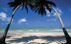 A Praia dos Carneiros, em Tamandaré, Pernambuco, reúne todos os atributos de uma praia paradisíaca: coqueirais, areia clara e mar verde-transparente