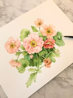 Watercolor Artists, Watercolor And Ink, Watercolor Flowers, Watercolor Paintings, Birth Flowers, Acrylic Painting Techniques, Botanical Art, Doodle Art, Painting Prints