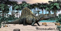 The Arizonasaurus resembles other known basal archosaurs like the Ctenosauriscus and the Lotosaurus. #Arizonasaurus #Ctenosauriscus #Lotosaurus