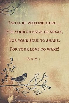 I will be waiting here....For your silence to break,For your soul to shake,For your love to wake!