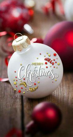 Christmas stocking filler tri couleur cavalier