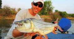 """Lake Kariba is a firm favourite through the year.  """"Tiger-time"""" coincides with the KITFT contest late in October. Bream are abundant.  local pro angler."""