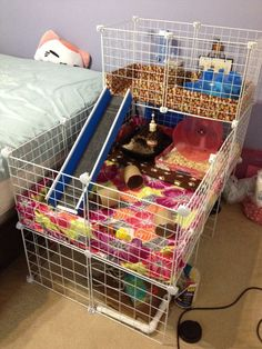 My finished hedgehog cage. Minor tweaks here and there but it's done! Diy Guinea Pig Cage, Guinea Pig House, Pet Guinea Pigs, Guinea Pig Care, Hedgehog Care, Hedgehog House, Pygmy Hedgehog Cage, Cavy Cage, Pet Cage