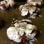 Chocolate Oatmeal Cookies. Tried the recipe, very good. Not too sweet. Perfect with royal icing