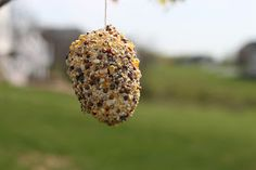 Playing House: Easter Egg Bird Feeders