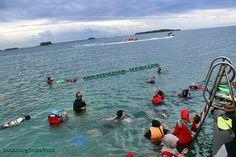 https://flic.kr/p/MJeLio | Wisata Snorkeling Pulau Putri | Snorkeling di Pulau Putri Resort Kepulauan Seribu. kepulauan-seribu.com/pulau-putri