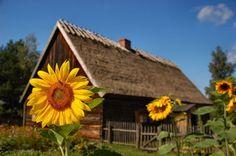 Kashubian Lake District in Poland
