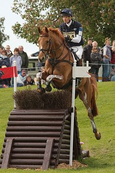 William Fox-Pitt - a true horseman who makes riding look so easy