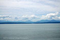 West Coast - LADYBUG COTTAGE PHOTOGRAPHY #1