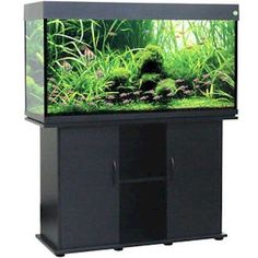 Delta Queen V 75 Gallon Rectangular Fish Tank + Stand + Kit+ 2 Yr. Warranty New