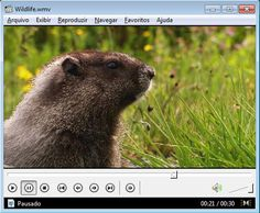 K-Lite Mega Codec Pack no Superdownloads - Download de jogos, programas, softwares, antivirus, aplicativos grátis em XP/Vista/7/8/8.1
