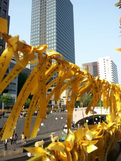 Seoul has been tied up with the yellow ribbons round the downtown, making a wish for the ferry passengers to return to their families and friends.