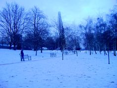 Hyde Park covered in snow, London