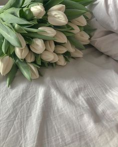 : hidekomoon: p e r s e p h o n e Beige Aesthetic, Aesthetic Themes, Flower Aesthetic, Aesthetic Photo, Aesthetic Pictures, Plants Are Friends, Wallpaper For Your Phone, Bouquet, Mother Nature