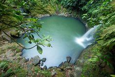 Tour Catarata de Pishurayacu - Laguna http://www.tourstierraverde.com/tour-catarata-de-pishurayacu/