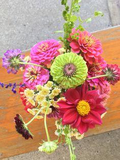 Bouquet. Zinnias, scabieuses, dahlia, atriplex, tanacetum, salvia.