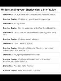 { Understanding your Sherlockian } THE LAST ONE.