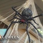Halloween how to make diy spiders Diy Halloween Spider, Creepy Halloween Props, Adult Halloween Party, Halloween Trick Or Treat, Holidays Halloween, Halloween Themes, Halloween Crafts, Halloween Havoc, Halloween Traditions