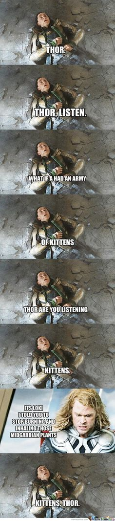 I haven't laughed this hard in a long time... Loki, Midgardian plants and kittens. Kittens, guys. Kittens.
