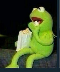 memes kermit the frog drinking tea / memes kermit ; memes kermit the frog ; memes kermit the frog hilarious ; memes kermit the frog drinking tea Memes Humor, New Memes, Funny Memes, Sapo Kermit, Reaction Pictures, Funny Pictures, Kermit The Frog, Kermit Face, Quality Memes