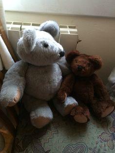 Bears Enjoying Their Time Together
