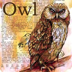 Print:  Owl Drawing on Distressed, Dictionary Page. $10.00, via Etsy.