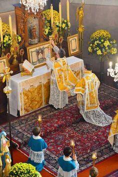 S. Messa solenne con parato dorato