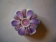 Pretty flower & colors.