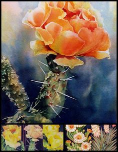 my cactus paintings Found on thepaintedprism.blogspot.com