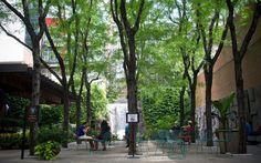 Rockefeller Center's Rooftop Gardens -  New York's Top Concierges Share Their City Secrets           | Travel + Leisure