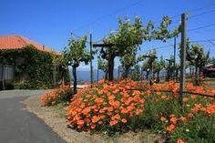 Barnett Winery, Napa, CA