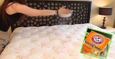 O sono é muito importante.Mas as pessoas se esquecem de cuidar do colchão delas.Até que elas se importam com a qualidade do material, com questões ligadas ao conforto.Mas se esquecem de um item muito importante: a limpeza.